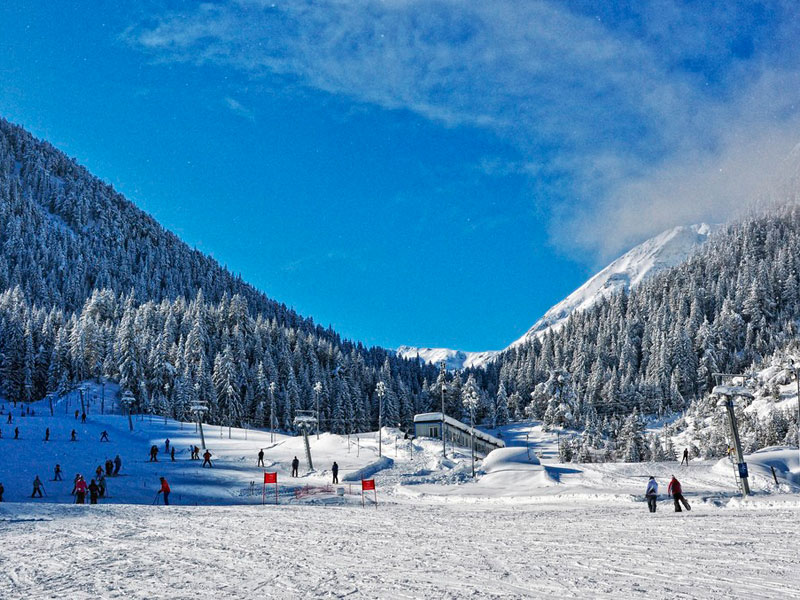 туры в Болгарию на Новый Год
