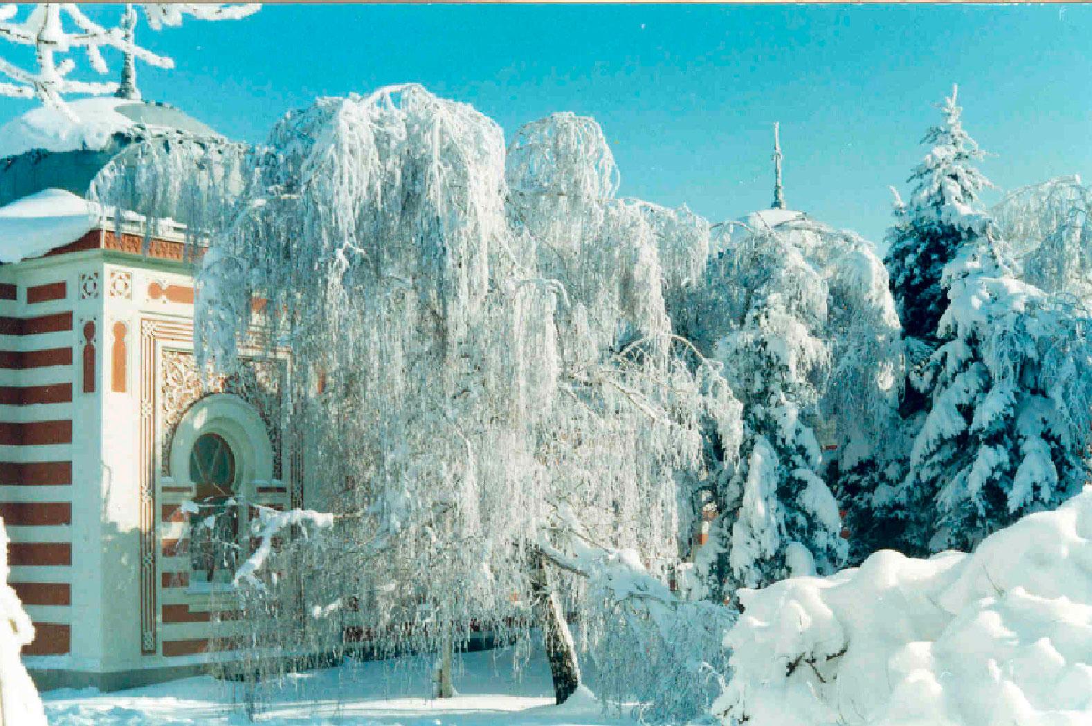 Новогодние туры в Минеральные Воды