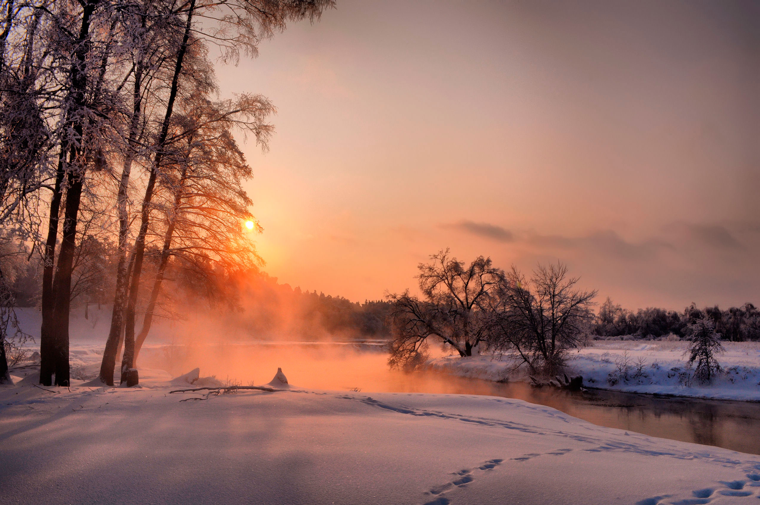 Новогодние туры в Подмосковье и Средней Полосе